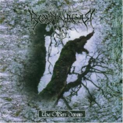 Borknagar-The Olden Domain