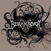 Borknagar-Origin