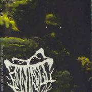 Finntroll - Midnattens Widunder